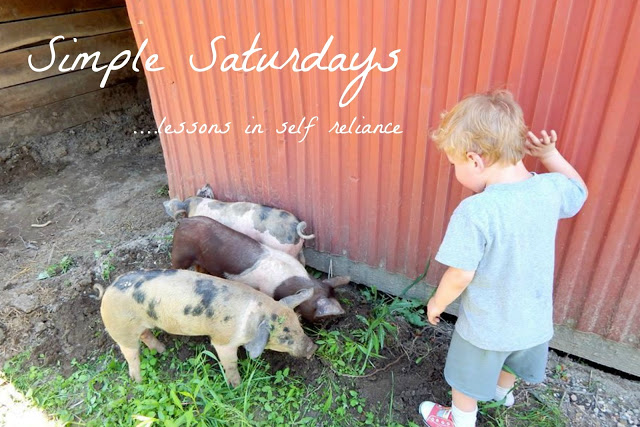 Simple Saturdays Blog Hop August 5th