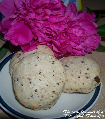 Country Kid Chocolate Chip Scones