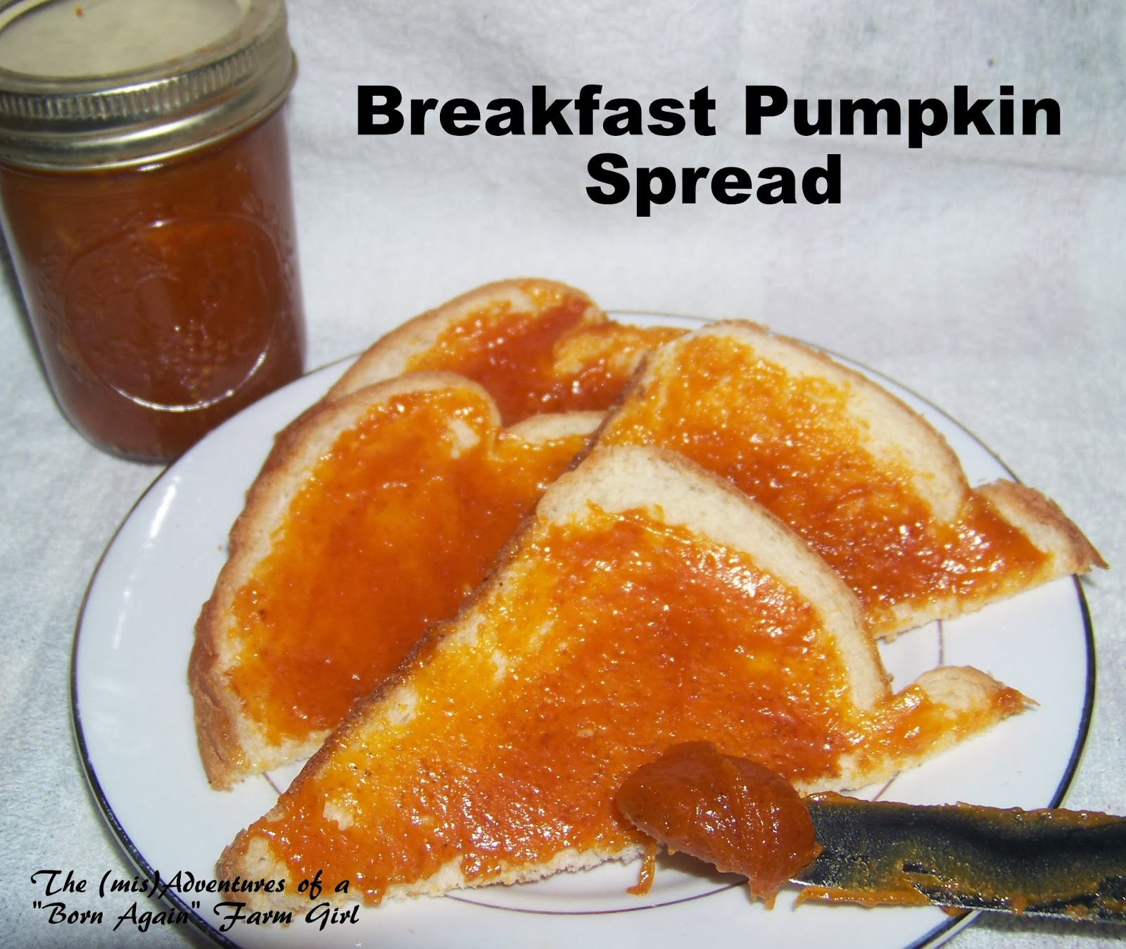 Pumpkin Breakfast Spread