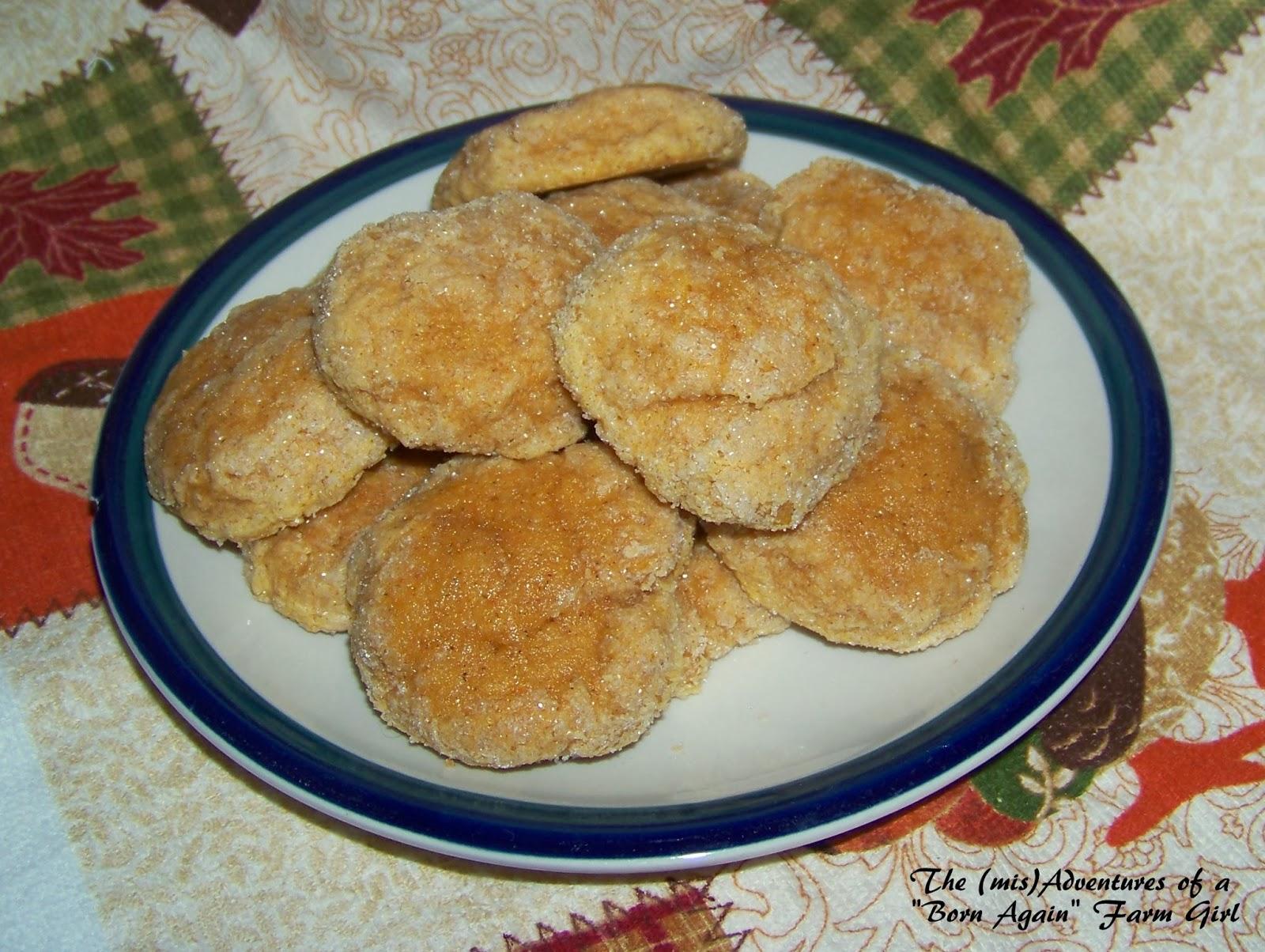 Pumpkindoodle Cookies