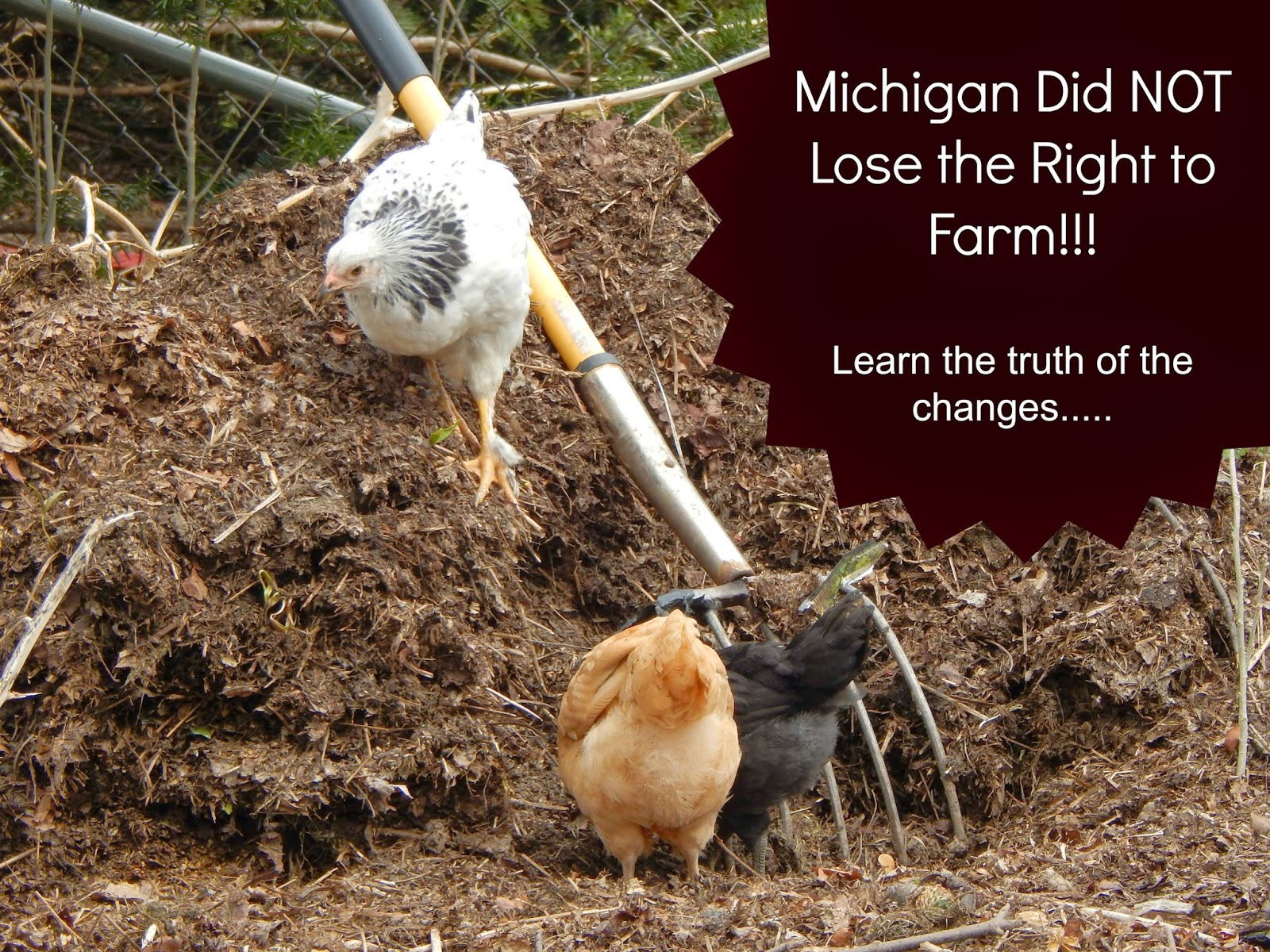 Michigan did NOT lose the right to farm this week!!!