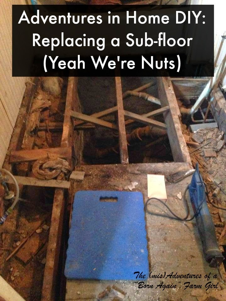 Adventures in Home DIY: Replacing a Sub-floor (Yeah We're Nuts)