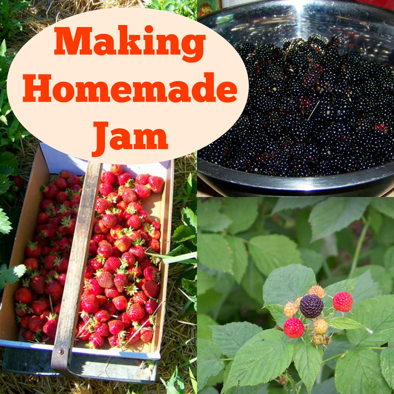 Making Homemade Jam