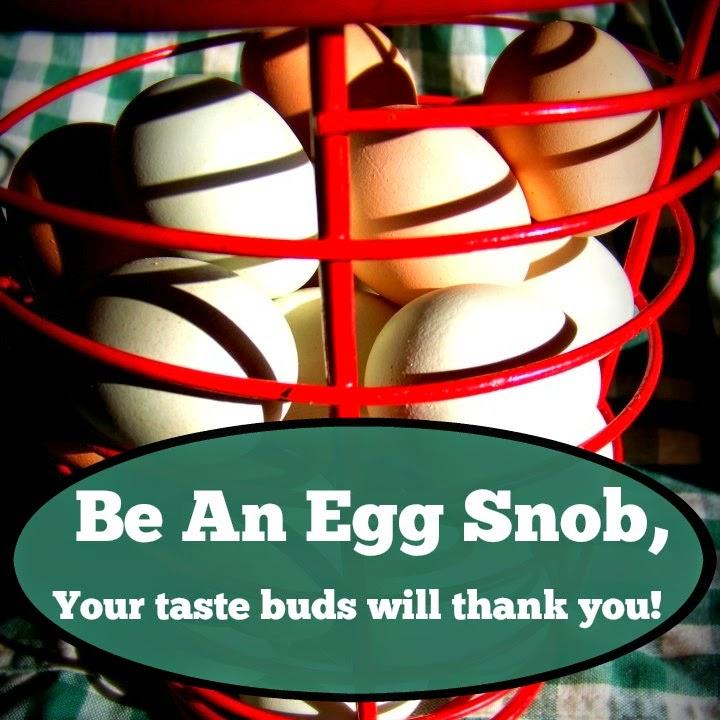 Be An Egg Snob