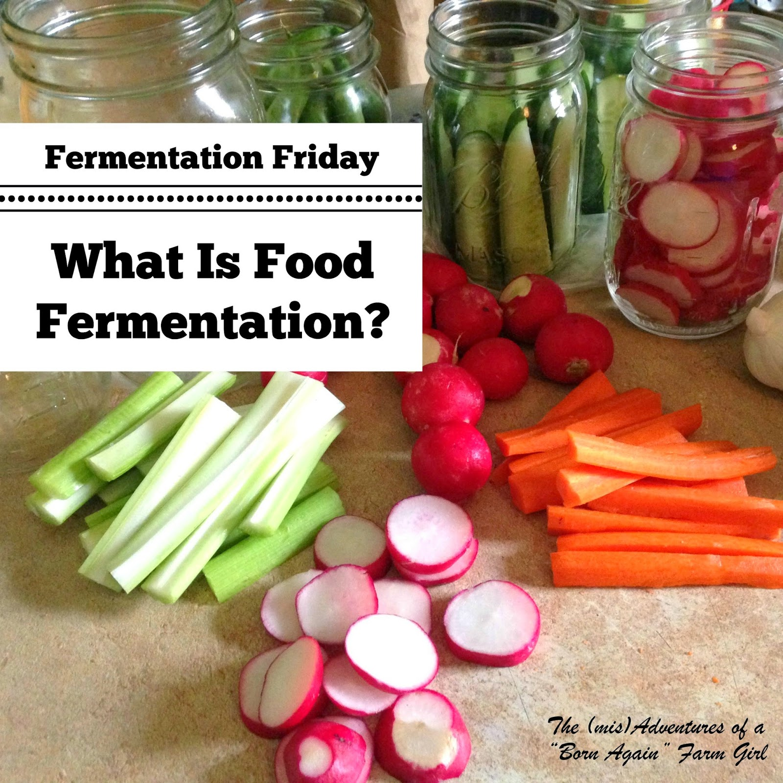 What Is Food Fermentation?