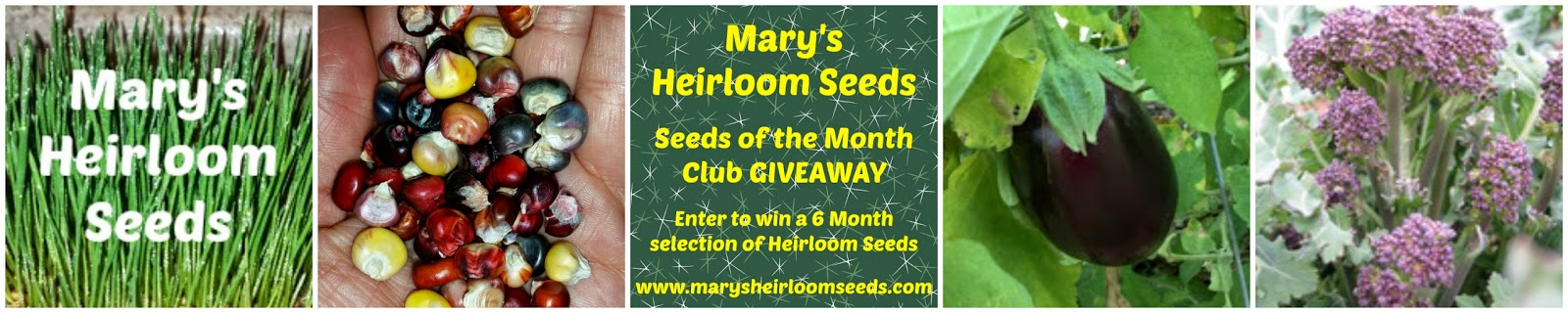 Organic, Heirloom, Non-GMO Seed Giveaway From Mary's Heirloom Seeds