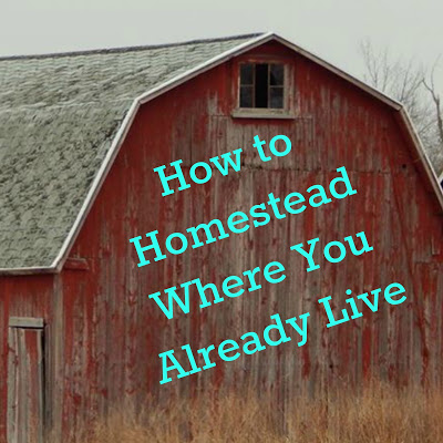 How to Homestead Where You Already Live
