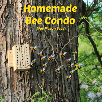 Homemade Bee Condo (For Mason Bees)