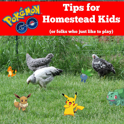 Pokemon Go Tips for Homestead Kids (or folks who just like to play)