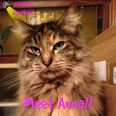Meet Anna