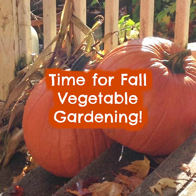 Time for Fall Vegetable Gardening!