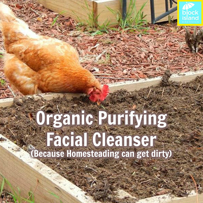 Organic Purifying Facial Cleanser (Because Homesteading Can Get Dirty)