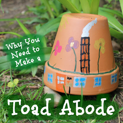 Why You Need to Make a Toad Abode