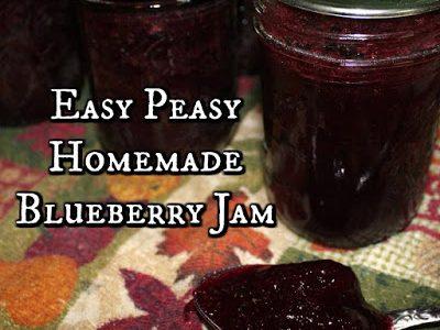 Easy Peasy Homemade Blueberry Jam