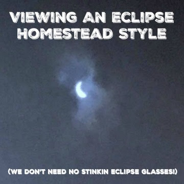 Viewing An Eclipse Homestead Style (We don't need no stinkin eclipse glasses!)