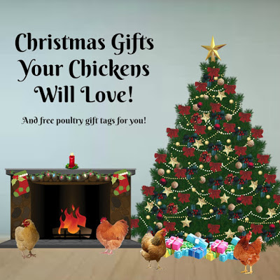 Christmas Gifts Your Chickens Will Love!