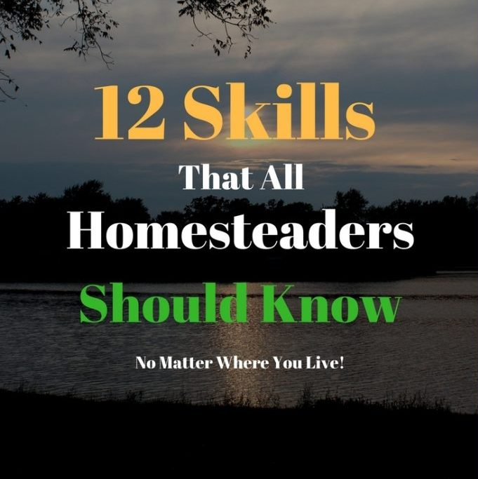 12 Skills That All Homesteaders Should Know