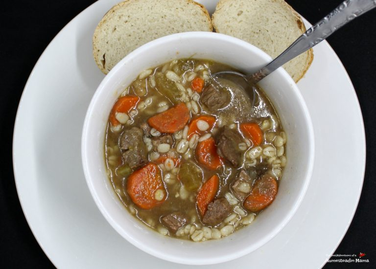 beef and barly soup