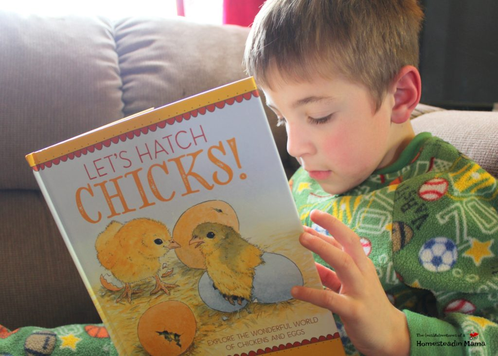 reading let's hatch chicks