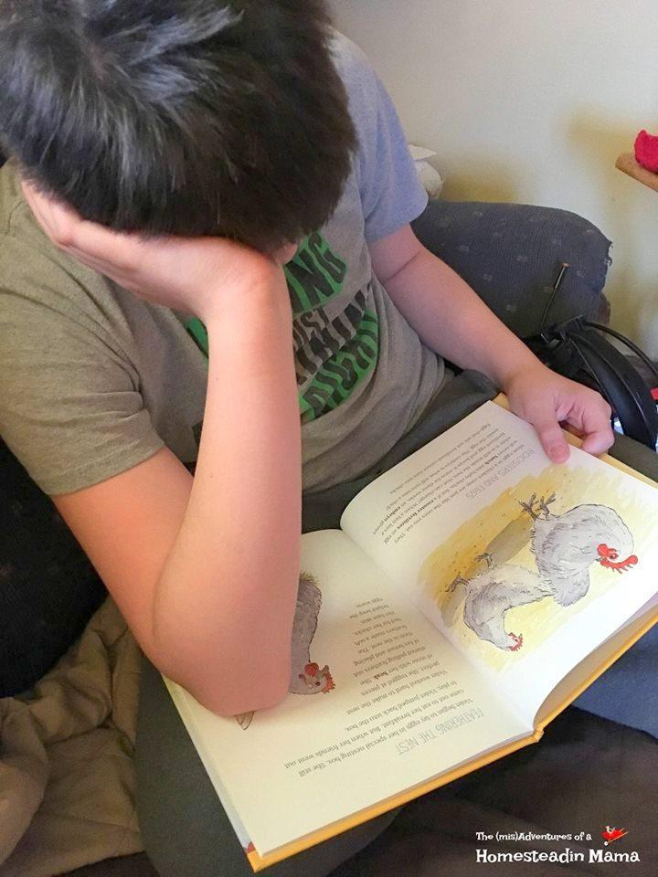 OCK reading book