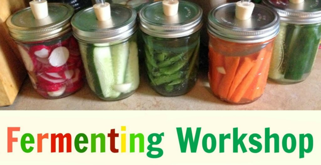 fermenting workshop