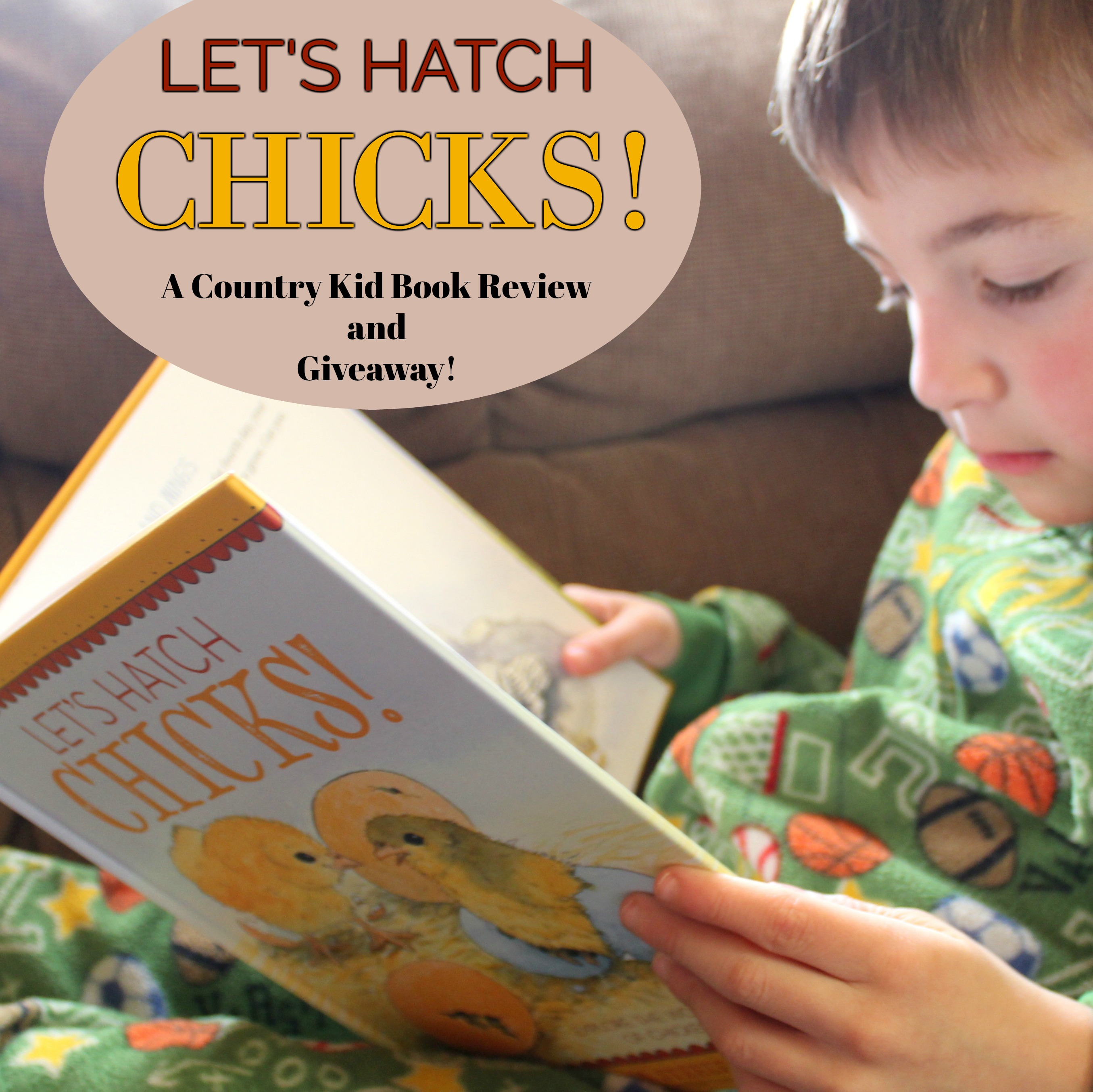 Let's Hatch Chicks Book Review