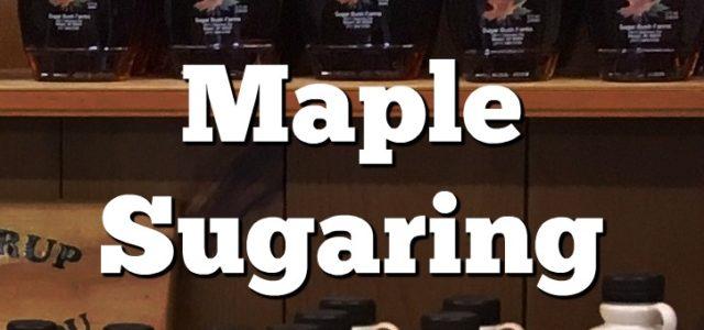 maple sugaring